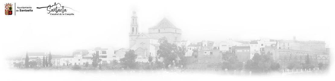 Ayuntamiento de Santaella