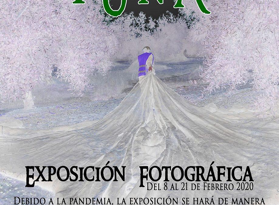 """EXPOSICIÓN FOTOGRÁFICA """"ACEITUNA"""" 2021"""